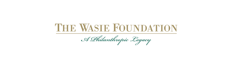 wasie foundation logo